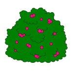 Smurfberry_Bush
